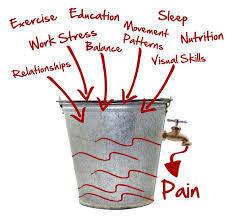 Fehler bei Rückenschmerzen Ganzheitlichkeit